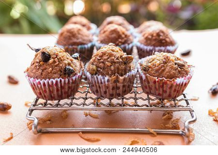 Insect Food In Banana Cupcakes