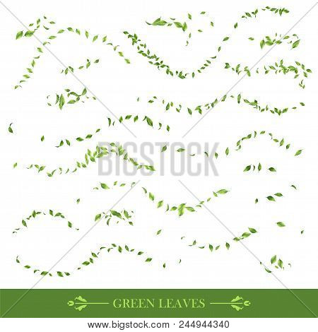Green Flying Or Falling Off Leaves. Vector Abstract Foliage Background