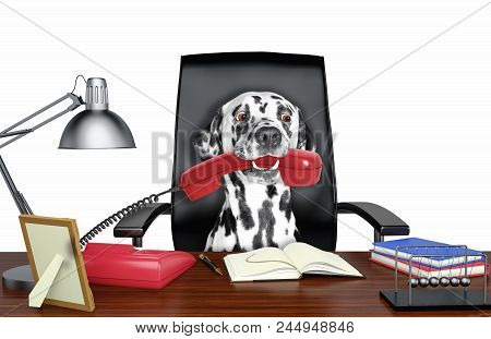 Cute Dalmatian Dog Sitting On Leather Chair With Telephone In His Mouth. Isolated On White Backgroun