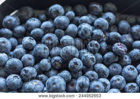 Close up of fresh blueberries concept of natural healty fruits