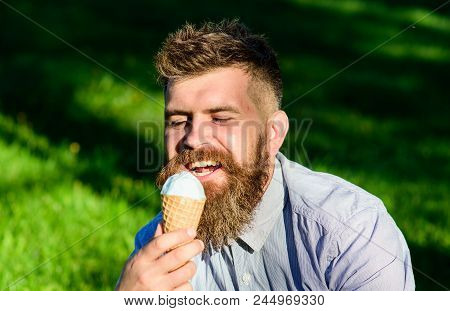 Temptation concept. Bearded man with ice cream cone. Man with beard and mustache on happy face enjoy ice cream, grass on background, defocused. Man with long beard eats ice cream, while sits on grass. poster