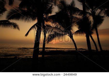 Big Island098