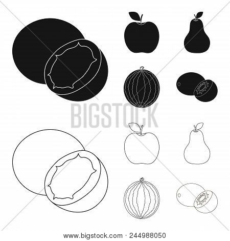 Coconut, Apple, Pear, Watermelon.fruits Set Collection Icons In Black, Outline Style Vector Symbol S