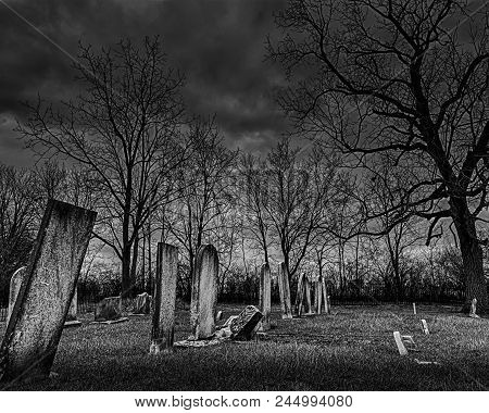 Dark And Spooky Gravel Yard In Woods