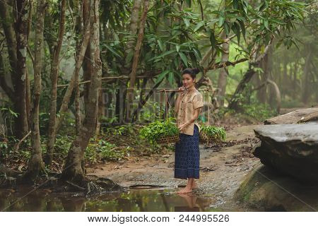 Asian Woman Wearing Traditional Thai Culture At The Forest.daily Life Of Rural Women In Thailand,asi