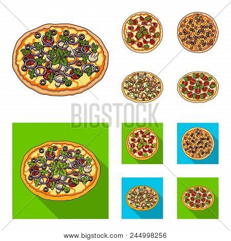 Pizza With Meat, Cheese And Other Filling. Different Pizza Set Collection Icons In Cartoon, Flat Sty