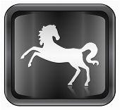 Horse Zodiac icon isolated on white background. poster