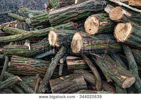 Logs For Firewood. Cut A Stack Of Logs. Stack Firewood. Stack Of Chopped Logs Ready For The Fire, Se