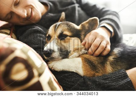 Portrait Of Young Man Hugs His Pet. Cute Welsh Corgi Puppy Resting With Owner, Spending Time Togethe