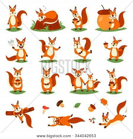 Cartoon Cute Squirrels. Little Funny Squirrels. Vector Illustration On A White Isolated Background