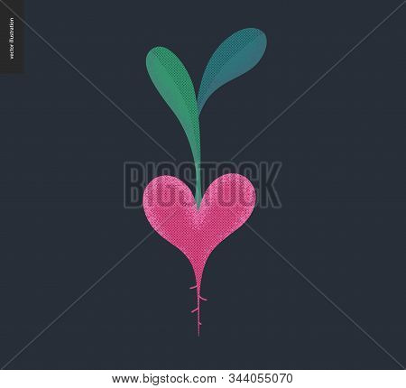 Vegetable Heart - Valentines Day Graphics. Modern Flat Vector Concept Illustration - A Beetroot Shap