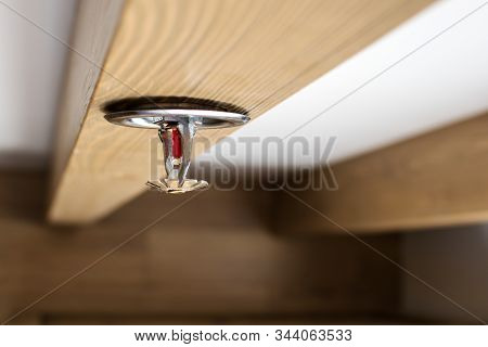 Automatic Head Fire Sprinkler Extinguisher On Wooden Ceiling Light Window View Selected Focus On Spr