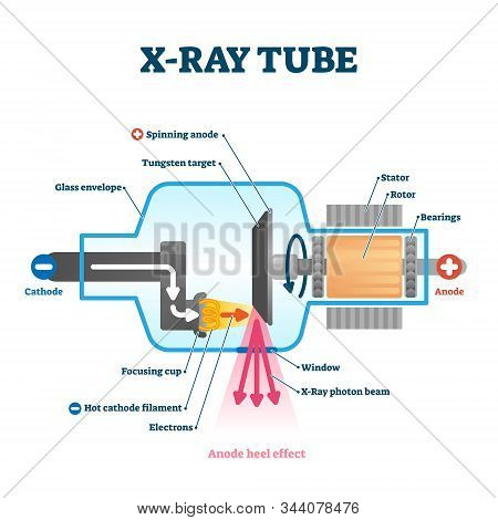 X Ray Tube Vector Illustration. Radiology Scan Equipment Structural Scheme. Healthcare Method For Tr