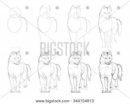 How To Draw Sketch Of Imaginary Cute Husky Dog. Creation Step By Step Pencil Drawing. Education For