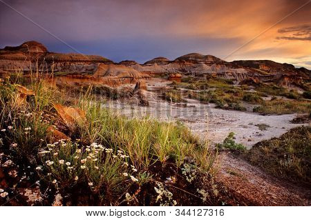 Badlands Trail At Sunset, Dinosaur Provincial Park, Alberta, Canada