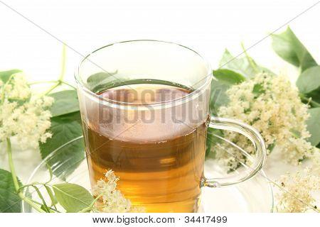Fresh Elderflower Tea