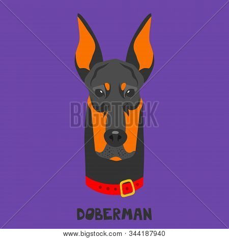 Dog Face On A Colored Background. Breed Doberman. Flat Picture. Illustration In The Style Of Pop Art