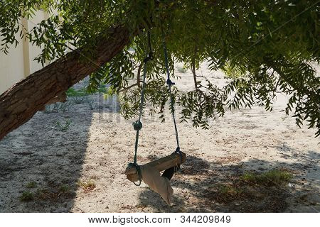 A Dirty Children Tree Swing. Wooden Swing Still Under The Trees In The Fall Leaves And Winter. Woode
