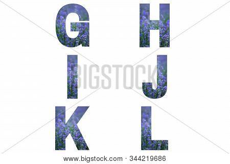 Lavender Font Alphabet G, H, I, J, K, L Made Of Violet Lavender Field.