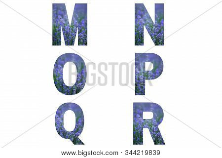 Lavender Font Alphabet M, N, O, P, Q, R Made Of Violet Lavender Field.