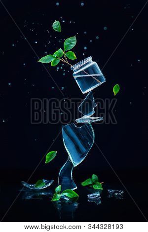 Glass Jar With Green Plants Balancing On A Stack Of Shards, Creative Spring Concept