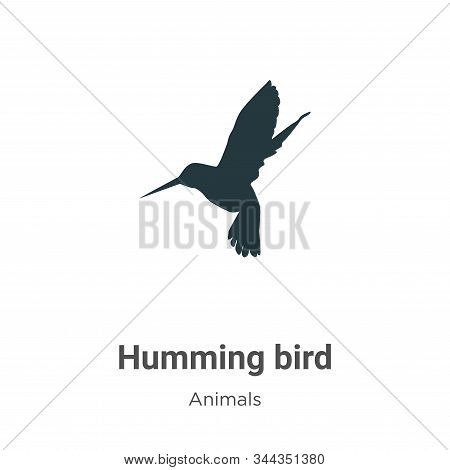 Humming bird icon isolated on white background from animals collection. Humming bird icon trendy and