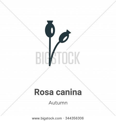 Rosa canina icon isolated on white background from autumn collection. Rosa canina icon trendy and mo