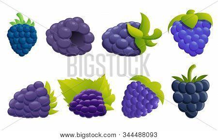 Blackberry Icons Set. Cartoon Set Of Blackberry Vector Icons For Web Design