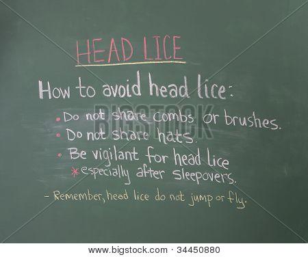 Head Lice Information On Chalkboard