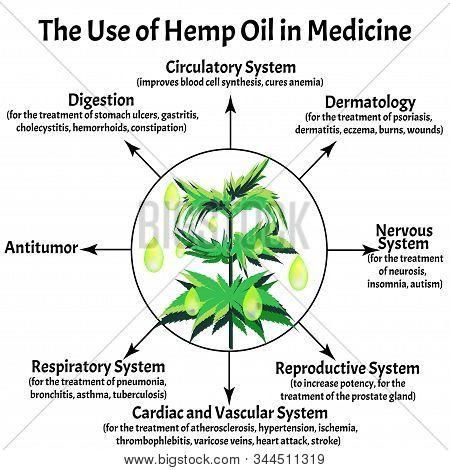 Useful Properties Of Hemp Oil. Marijuana Icons Cbd. Cannabinoid Logo. Marijuana Leaves. Hemp Oil. In