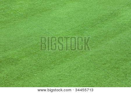 Artificial Grass Field Side View Texture