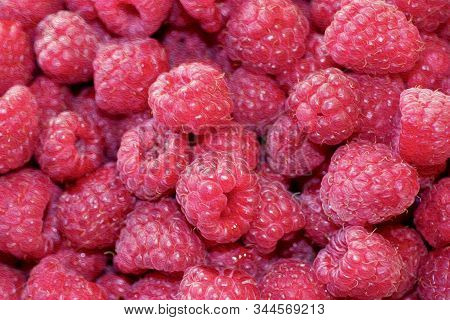 Natural Background Of Sweet Raspberry. Fresh And Ripe Red Berries, Closeup Photo. Healthy, Delicious