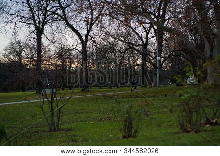 Green Spring Park With Paths And Bike Paths. Infrastructure. Place For Rest And Entertainment. Natur