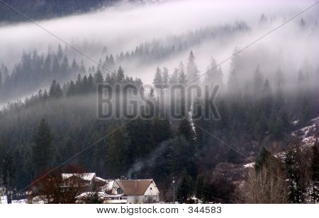 Home In Mist