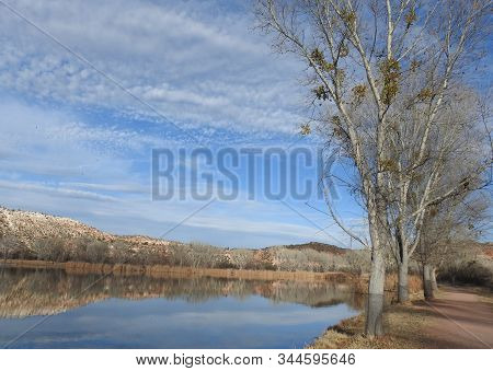 Natural Reflections On A Small Lake In Dead Horse Ranch State Park In Cottonwood, Arizona.