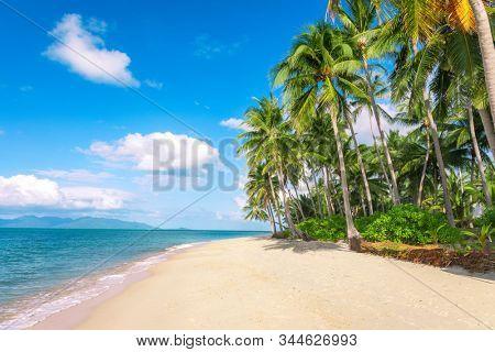 beach and coconut palm trees. Koh Samui, Thailand