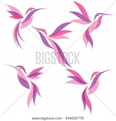 Set Bird Logo. Flying Bird Logo. Modern Bird Logo Design Concept . Nature Bird Logo Illustration.  V