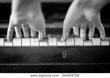 Pianist Hands Playing Piano. Black And White Photography/ View From The Lower Angle