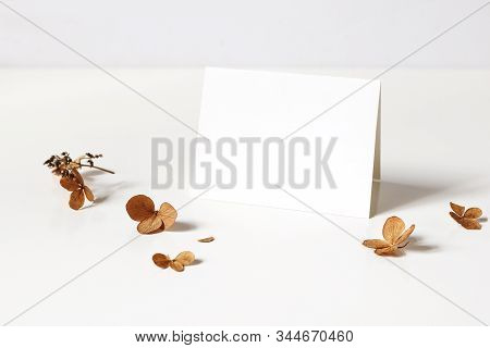 Winter, Fall Wedding, Birthday Table Composition. Stationery Mockup Of Place Card. Dry Hydrangea Flo