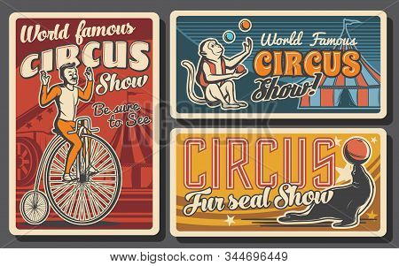 Circus Or Carnival Top Tent Show Retro Banners. Vector Acrobat Riding Vintage Bicycle, Trained Anima