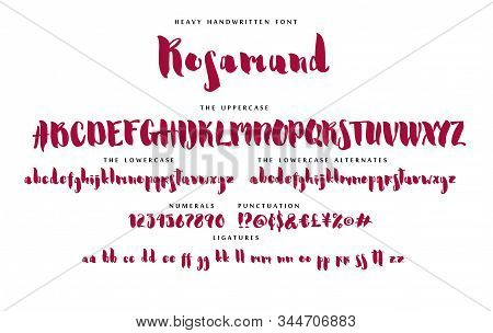 Handwritten Skript Font Heavy Alphabet Rosamund Set With Uppercase And Lowercase Letters Numbers And