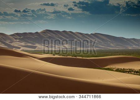 Landscape of the sand dunes Hongoryn Els in Gobi Desert at sunset, Mongolia
