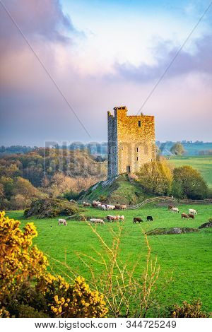 Carrigaphooca Castle Photographed From The North East In The Evening. The Rock Of The Fairies. Irela