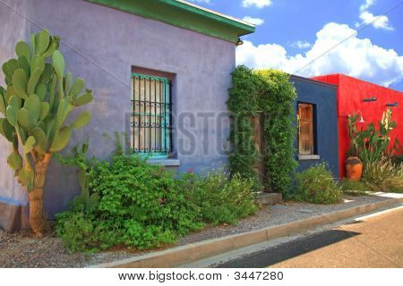 Colorful Historic Homes