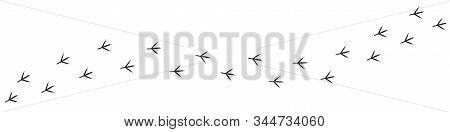 Footpath Trail Of Chicken. Hunting Concept, Vector