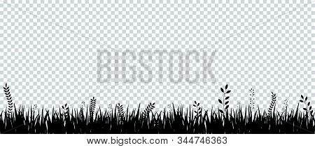 Black Silhouette Of Grass On Transparent Background. Template For Summer, Birthday Or Holiday Card.