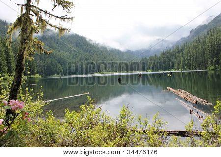 Lake Pamelia