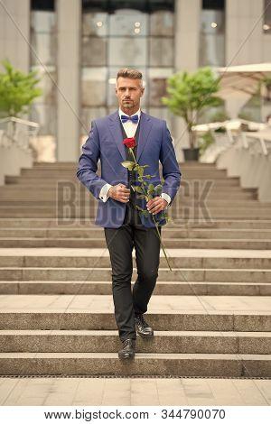 Romantic Gentleman. Man Mature Confident Macho With Romantic Gift. Handsome Guy Rose Flower Romantic