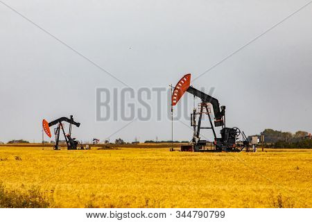 Onshore Oil Wells With Mechanical Pumpjacks Are Seen Surrounded By Golden Crop Fields In Saskatchewa