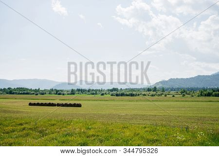 Vivid Green Scenery With Big Beautiful Mowed Field In Sunlight. Wonderful Scenic Landscape With Hay